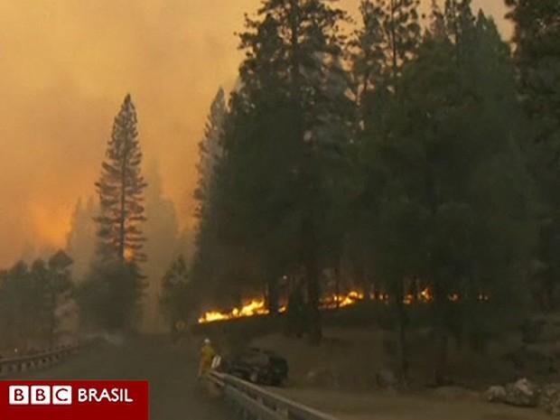 Incêndio já atinge quase 600 km² de área e ameaça poluir a água de San Francisco (Foto: BBC)