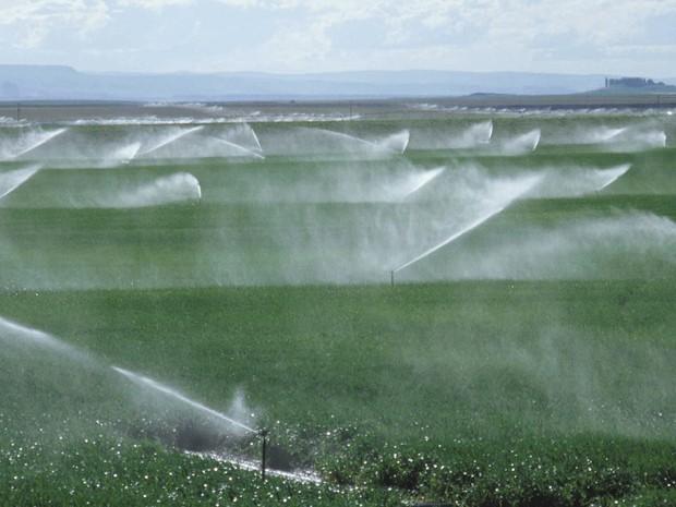 Irrigação é quarta revolução agrícola, diz secretário de Agricultura do RS, Luiz Fernando Mainardi (Foto: Divulgação/Ministério da Integração Nacional)