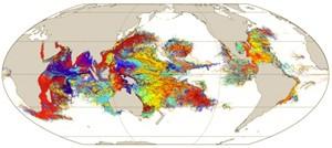 Regiões coloridas no mapa mostram a simulação da dispersão de larvas de corais pelo mundo (Foto: Divulgação/Universidade de Bristol)
