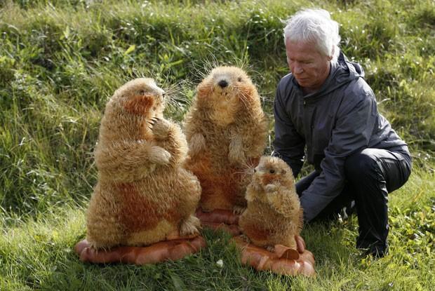 Sergei Bobkov criou esculturas realistas de marmotas usando pequenas lascas de madeira (Foto: Ilya Naymushin/Reuters)