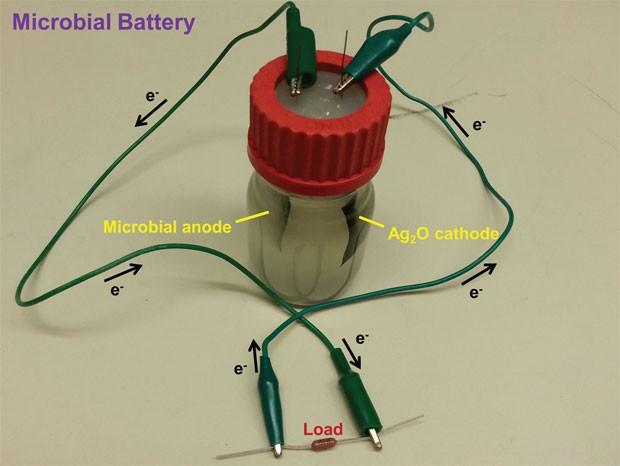 Bateria que funciona com esgoto (Foto: PNAS/Divulgação)