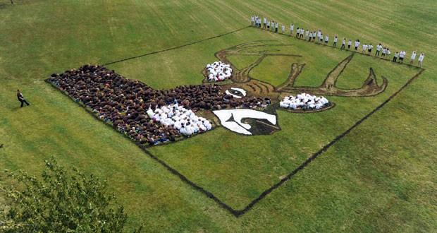 Estudantes formaram na quarta-feira (18) a imagem de um veado em gramado de escola (Foto: John Dunham/The Messenger-Inquirer/AP)