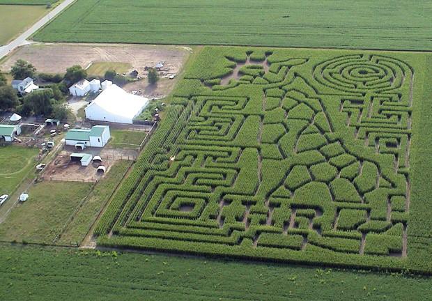 Labirinto com desenho de girafa foi feito em Troy, no estado de Ohio (Foto: Allen G. Breed/AP)