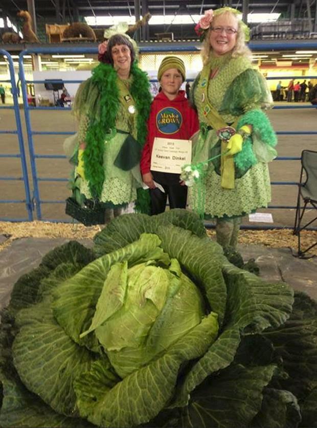 Keevan Dinkel ao lado das 'Fadas do Repolho' antes da pesagem oficial (Foto: Reprodução/Facebook/Alaska State Fair)