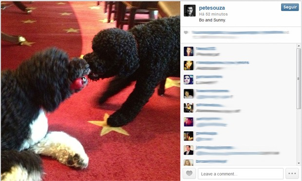 Sunny e Bo 'brigam' em foto publicada por Pete Souza nesta terça (3) (Foto: http://instagram.com/petesouza)