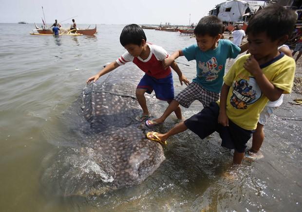 Crianças pisam em carcaça de tubarão-baleia na costa de Tanza, nas Filipinas. (Foto: Reuters/Erik De Castro )