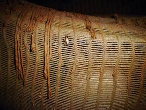 Infestação de baratas está vários locais na aldeia (Foto: Wilson Uieda/Divulgação)