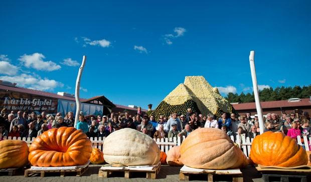Quase 50 produtores participaram do evento em Klaistow (Foto: Patrick Pleul/DPA/AFP)