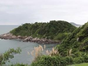 APA Ponta do Araçá tem mais de 500 espécies de animais e plantas (Foto: Divulgação)