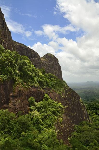 Vista da formação rochosa chamada Kasikasima, no Suriname, na região onde cientistas encontraram novas espécies de animais (Foto: Divulgação/Trond Larsen/Conservação Internacional)