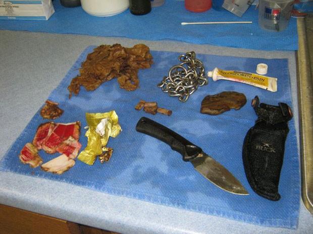 Veterinário exibe diversos itens retirados de dentro do cachorro Izzy, incluindo uma corrente e uma faca de caça (Foto: Caters News/The Grosby Group )