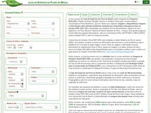 Imenso herbário virtual leva flora brasileira para a internet (Foto: Reprodução/Reflora)