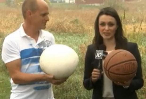 Ed Delaney exibe cogumelo do tamanho de bola de basquete (Foto: Reprodução/YouTube/NBCNewsTV1)