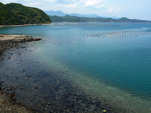 Imagem de 19 de abril de 2012 mostra enseada na cidade de Taiji, no oeste do Japão, onde há plano de abrir um parque marinho no qual as pessoas possam brincar com golfinhos (Foto: Jiji Press/AFP)