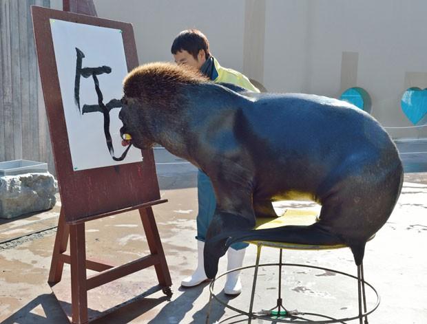 Leão-marinho 'Jay' desenhou o ideograma chinês correspondente a palavra 'cavalo' (Foto: Kazuhiro Nogi/AFP)