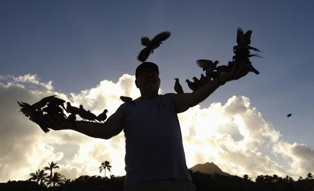 Homem foi flagrado alimentando dezenas de pombos 'empoleirados' em seus braços (Foto: Kevin Lamarque/Reuters)