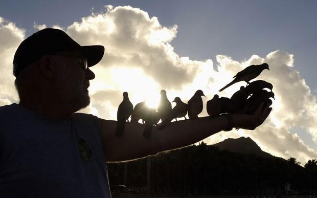 Homem contou que alimenta as aves todas as manhãs há 10 anos (Foto: Kevin Lamarque/Reuters)