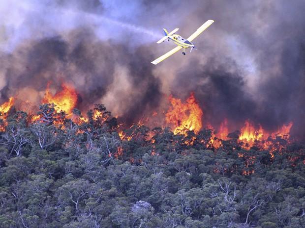 Avião tenta combater as chamas em incêndio florestal na Austrália. (Foto: Country Fire Authority/AP)
