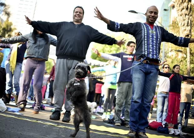 Cão fica em pé para 'acompanhar' coreografia de ioga durante evento realizado na Cidade do México, capital do México (Foto: Yuri Cortez/AFP)