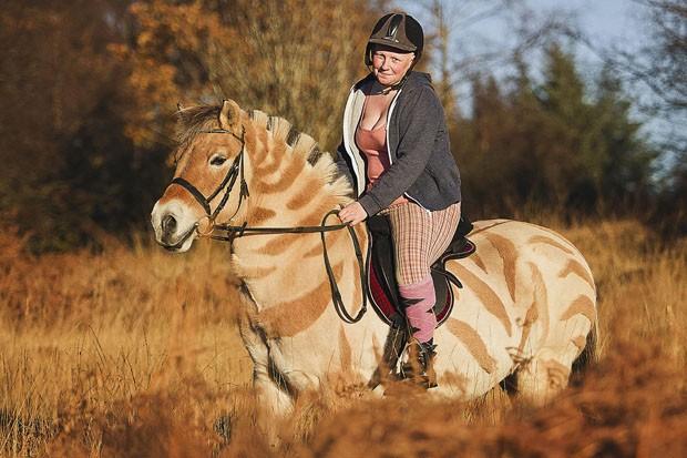 Maria McKenna aparou os pelos de sua égua para que ficasse parecida com uma zebra (Foto: Caters News)