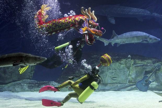 Em meio a esturjões, mergulhadores fazem dança do dragão para comemorar a chegada do Ano Novo Chinês em aquário de Pequim, na China (Foto: China Daily/Reuters)