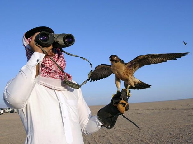 Competição realizada em deserto próximo a cidade de Tabuk mostra qual o falcão mais rápido (Foto: Mohamed Al Hwaity/Reuters)