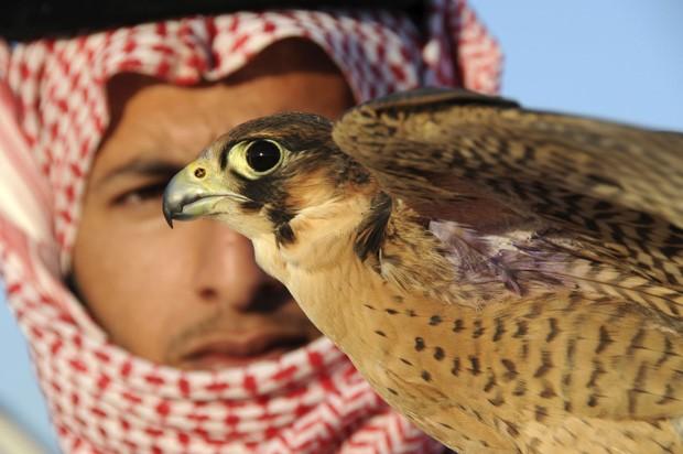 Homem se prepara para soltar falcão durante competição na Arábia Saudita (Foto: Mohamed Al Hwaity/Reuters)