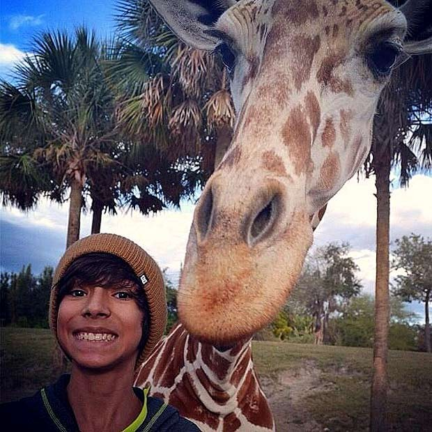 Girafa que apareceu em foto do estudante Davi Brasil em parque na Flórida, nos Estados Unidos, quando a mãe dele, Claudia, fazia o registro do passeio (Foto: Claudia Brasil/Divulgação)