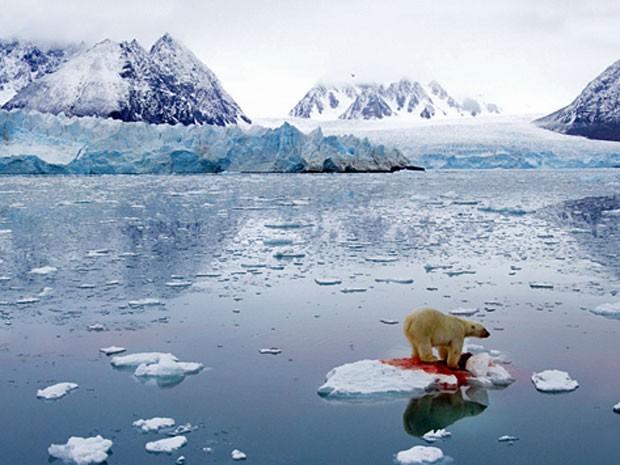 """""""Esta foto foi feita pelo fotógrafo norueguês Pål Hermansen, e é o resultado da junção de duas imagens. Ele capturou este cenário incrível e o extraordinário ponto vermelho onde o urso polar matou uma foca."""" (Foto: BBC)"""