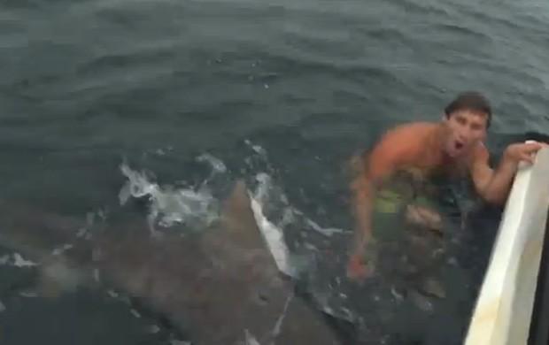 Homem parece não acreditar que passou ao lado de tubarão tigre de 3 m de comprimento (Foto: Reprodução/YouTube/TheMadhueys)