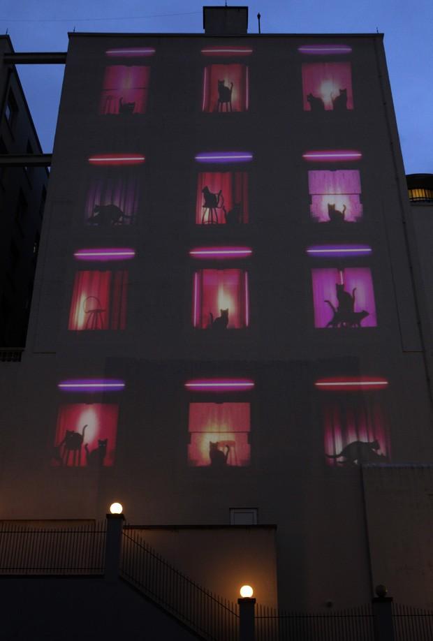 Hotel se transformou em 'bordel de gatos' durante campanha em Bruxelas, na Bélgica (Foto: Yves Logghe/AP)