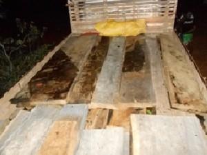 Madeira apreendida em caminhão será doada para instituições no Amapá (Foto: Divulgação/Imap)