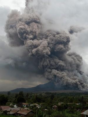Cinzas da erupção do vulcão cobrem árvores na Indonésia (Foto: Adek Berry/AFP)
