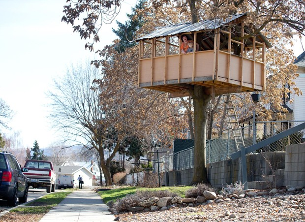 Zeb Postelwait afirma que sua casa na árvore não oferece riscos aos pedestres, mas a cidade quer entrar na justiça para removê-la (Foto: The Wenatchee World, Don Seabrook/AP)