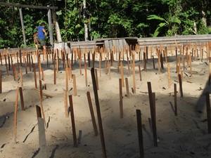 Novas covas são criadas para promover incubação de filhotes de tartarugas (Foto: Eliazar Bezerra/Ibama)