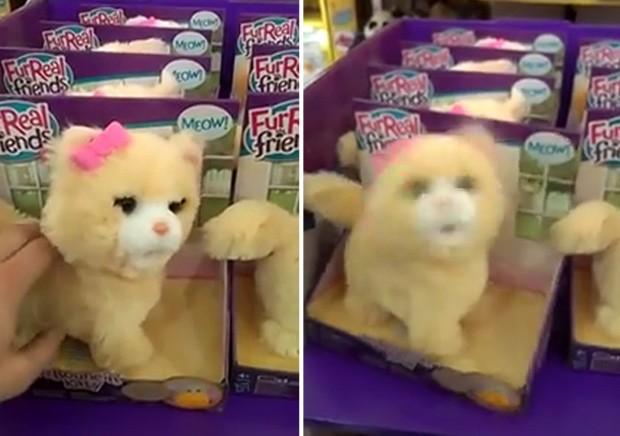 Gravação de brinquedo de 'gato do metal' fez sucesso na web (Foto: Reprodução/YouTube/FightYourBoredom)