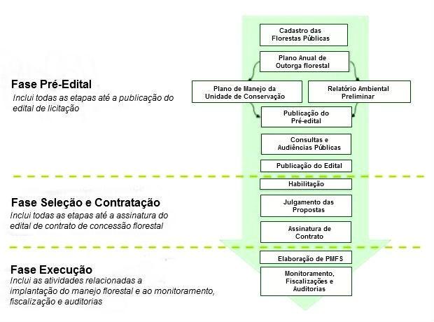 Concessão de florestas tem três fases a serem seguidas (Foto: Divulgação/IEF Amapá)