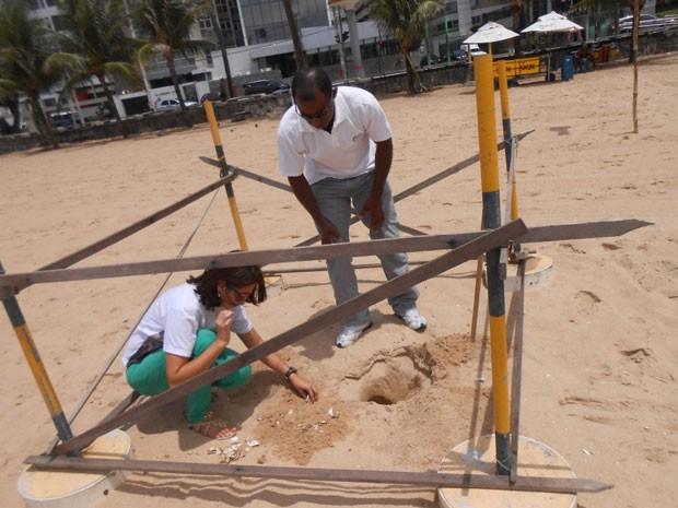 Integrantes da ONG analisam ninho de tartarugas na Praia de Boa Viagem (Foto: Divulgação/ ONG Ecoassociados)