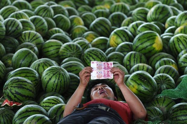 Em pose 'preguiçosa', vendedor foi visto deitado entre melancias 'contemplando' notas de dinheiro em mercado de Changzhi, na China (Foto: Stinger/Reuters)