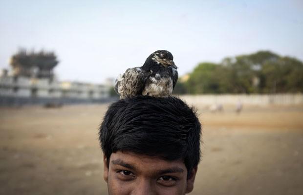 Um menino foi fotografado enquanto seu pombo de estimação descansava em sua cabeça em Mumbai, na Índia (Foto: Danish Siddiqui/Reuters)