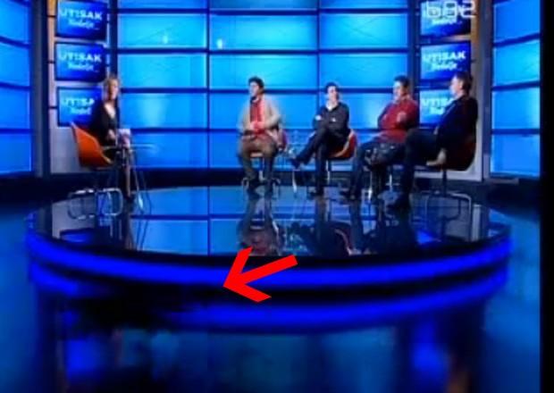 Animal cruzou estúdio durante programa ao vivo e deixou apresentadora sem palavras (Foto: Reprodução)