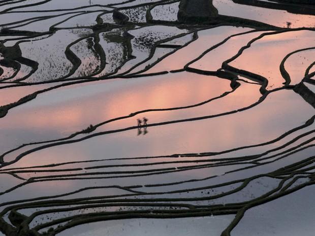 Pessoas são vistas andando em meio a uma plantação de arroz em Yuanyang, na China. (Foto: AP/Liang Zhiqiang/Xinhua)