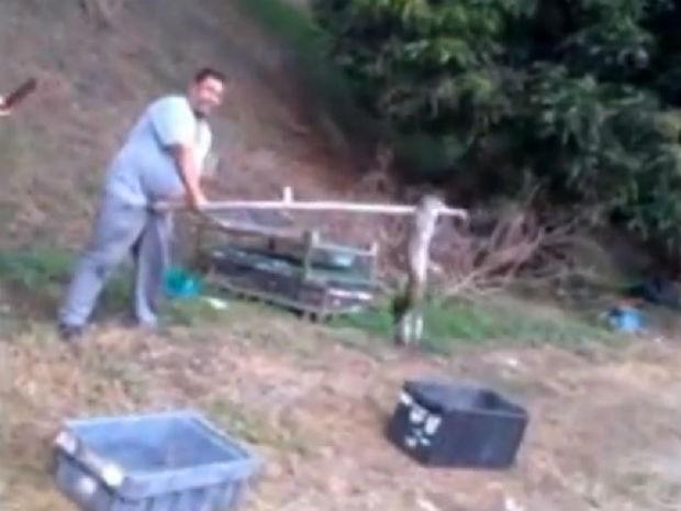 Réptil de quase dois metros foi capturado por funcionários (Foto: Reprodução)
