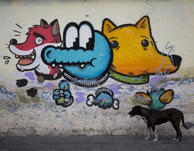 Grafite parece 'de olho' em cachorro ao segurar osso na cidade do México, no México (Foto: Rebecca Blackwell/AP)