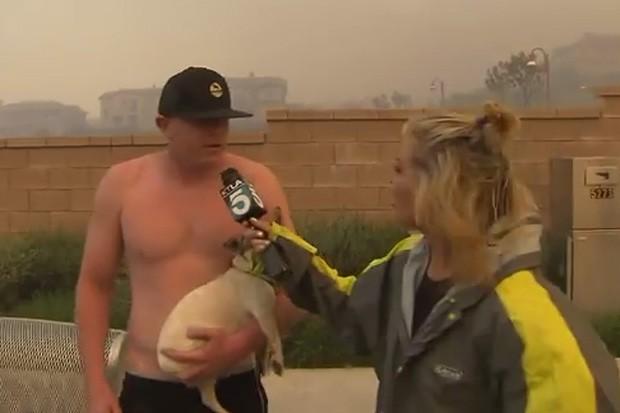 Repórter ficou surpresa ao receber 'xaveco' durante transmissão ao vivo sobre incêndio nos EUA (Foto: Reprodução/YouTube/KTLA 5)