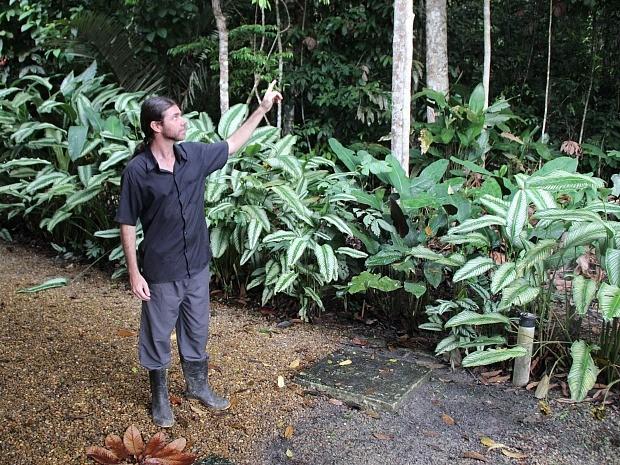 Botânico fez avaliação do local após o incêndio da árvore (Foto: Adneison Severiano/G1 AM)